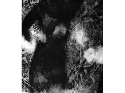 Mariko Shindo -The Indefinite Silver Grains-